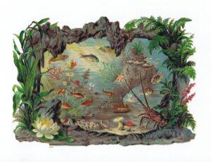 Fisk og krybdyr